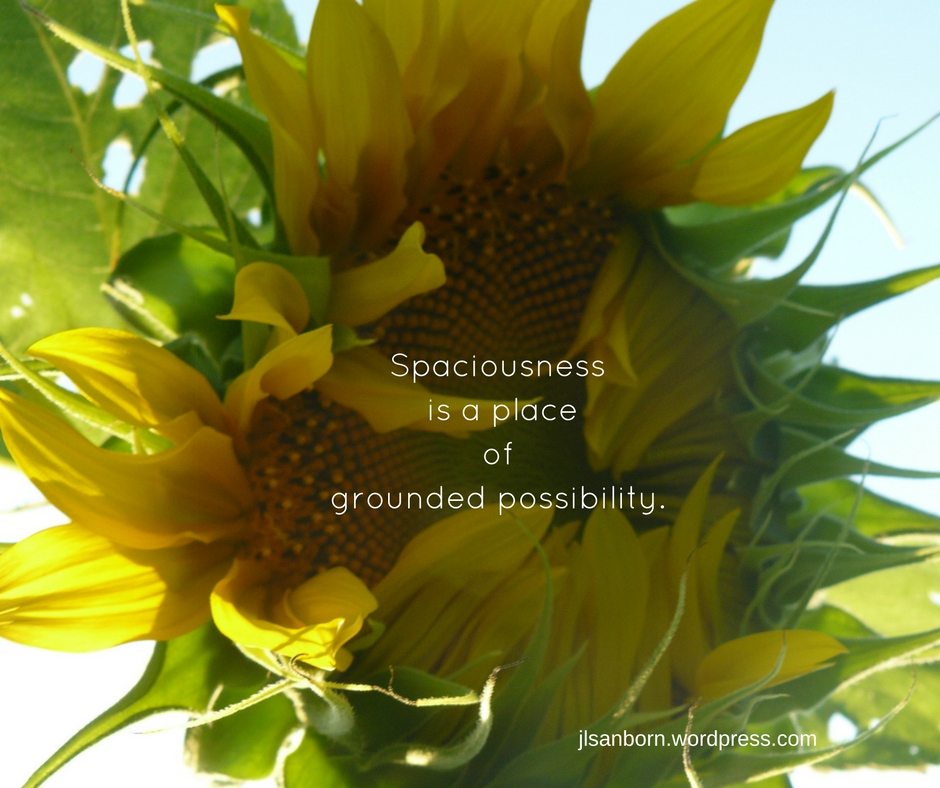 Spaciousness is a place of grounded possibility.